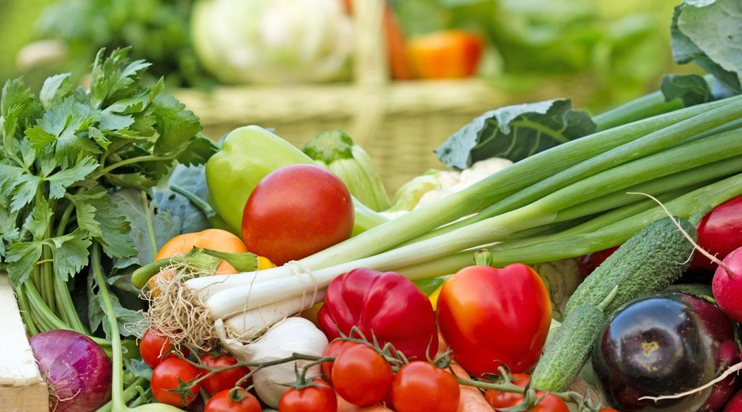 Best-Vegetables-for-Pitta