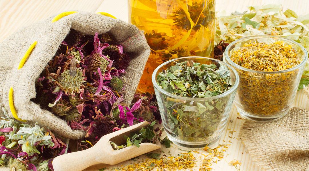 5-wonder-herbs-to-boost-immunity