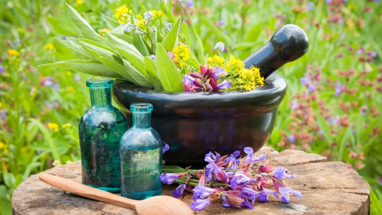 Blood-purifying-herbs_206545645