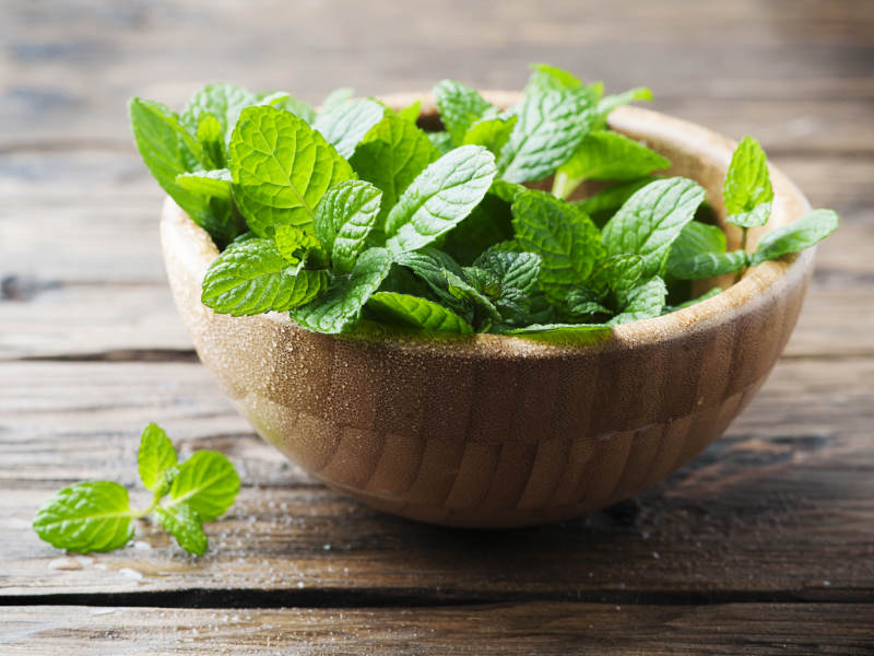 5 Natural Home Remedies For Nausea- Fresh Peppermint Leaves