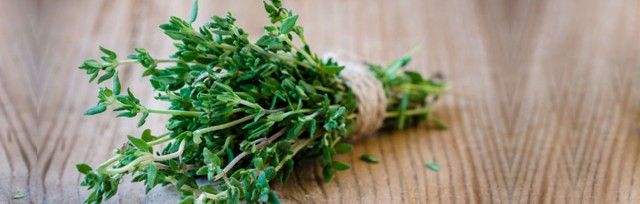 Thyme-text_206465842