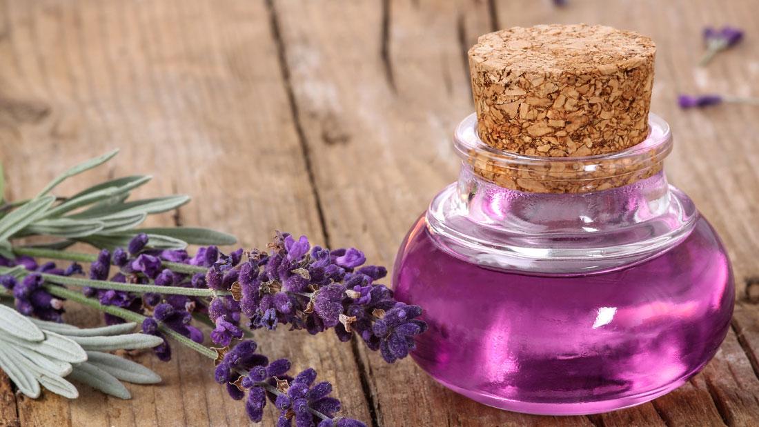 lavender-oil-for-neck-pain