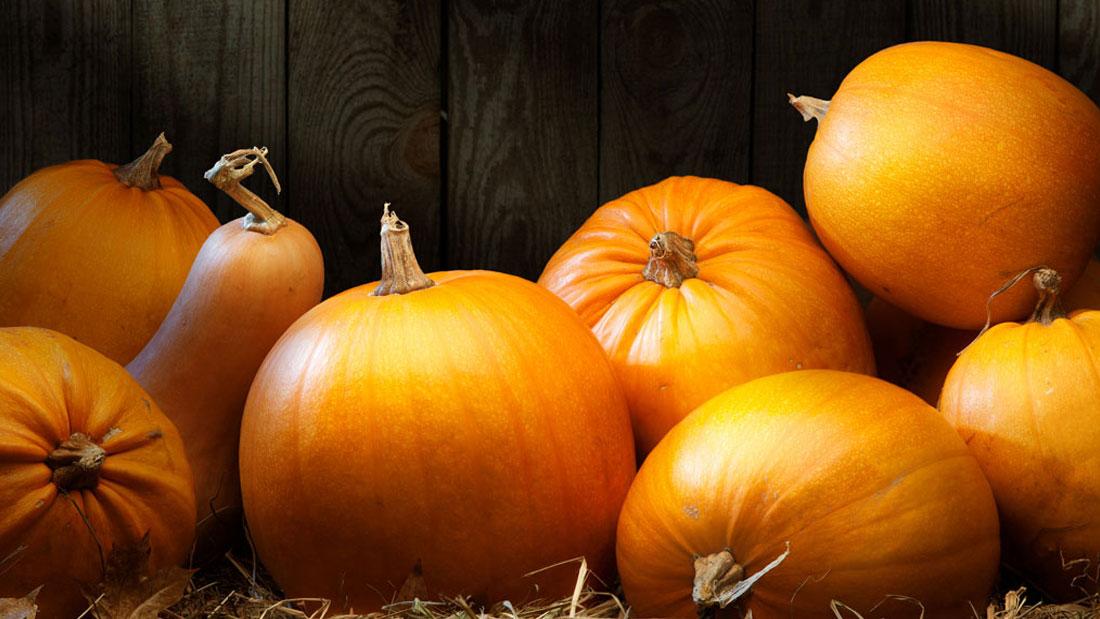 pumpkin diys for skin hair