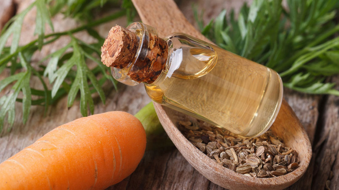carrot seed oil for anti aging