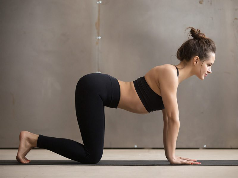 Yoga Poses: Half Plank Pose