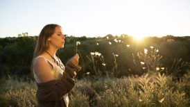 6 Natural Remedies for Seasonal Allergy Relief