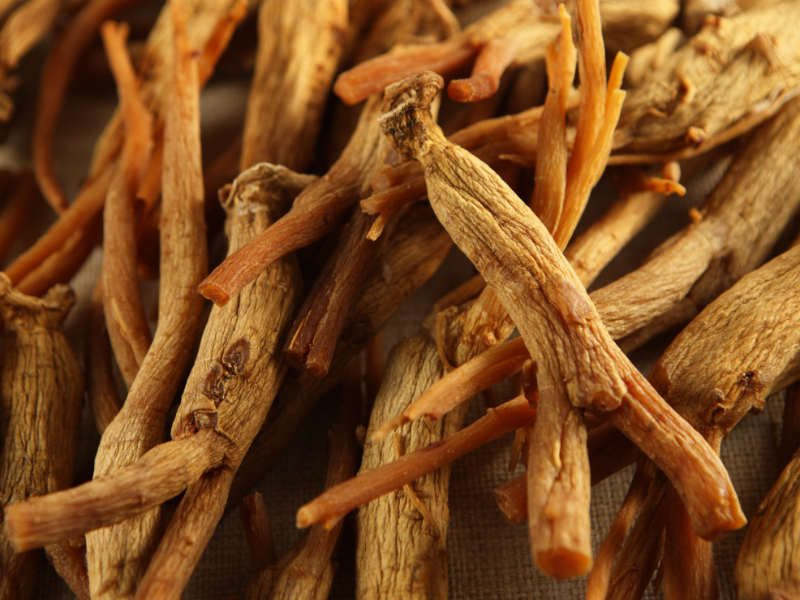 Adaptogenic Herb: Ginseng