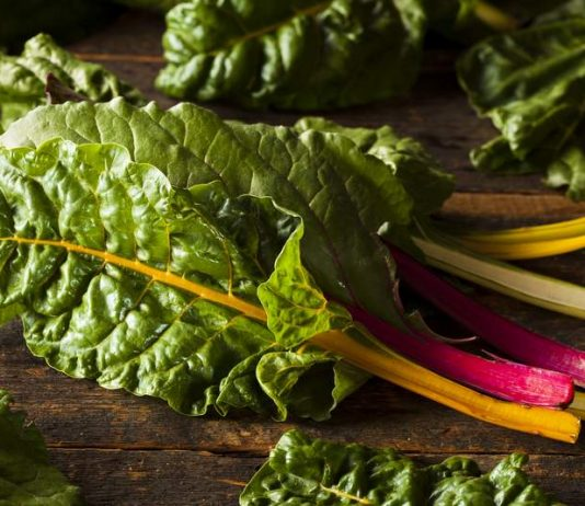 Spotlight on Swiss Chard