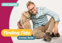 ZL-Finding-Fido-S2-Art