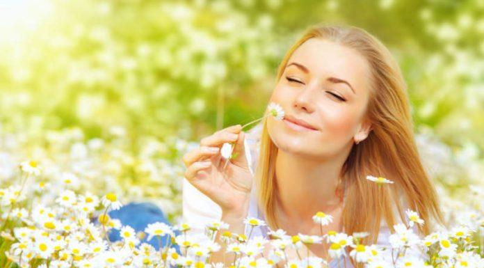 6 Foods to Fight Seasonal Allergies