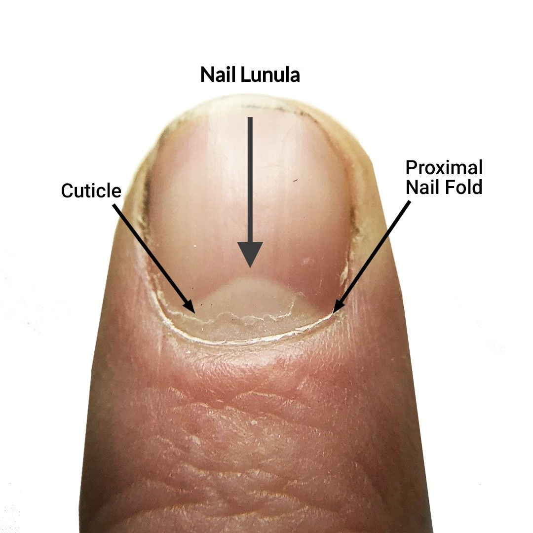 Manicure Tips_ How to Care for Your Cuticles