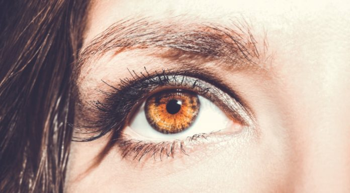 10 Foods That Promote Eye Health