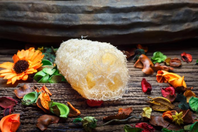 Lather Yourself Up With the Benefits of Luffa