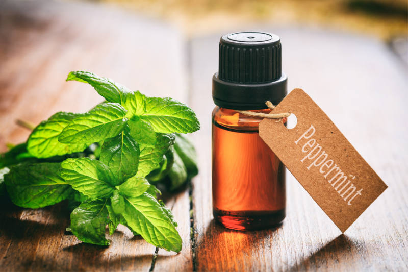 Essential Oils to Enhance Exercise Performance