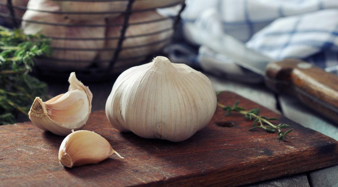 Garlic_158161301