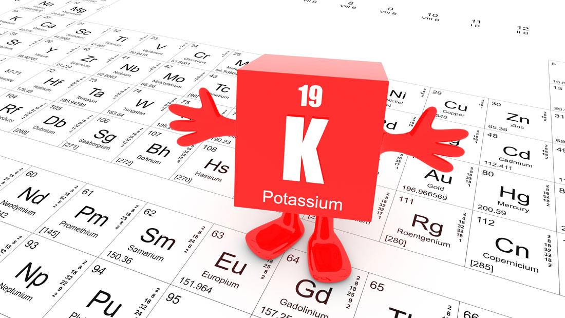 potassium_110854079