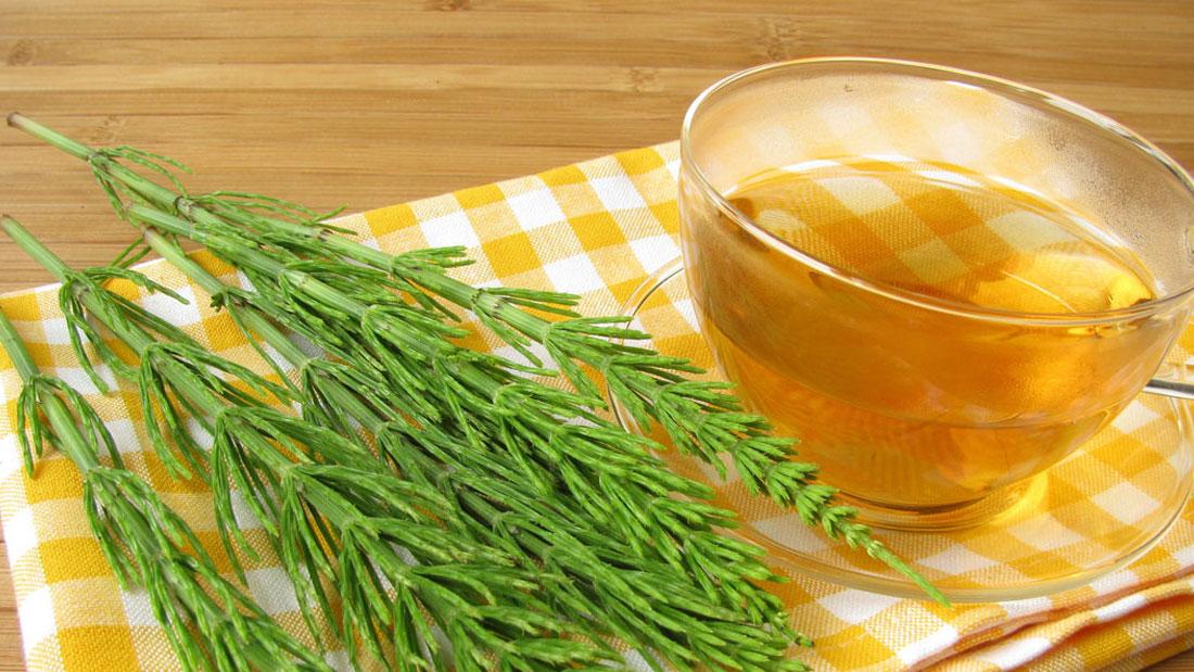 Horsetail-tea