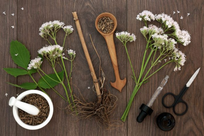 Ease Insomnia and Anxiety With Valerian Root