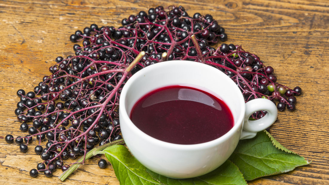 Elderberry-anti-virus-syrup