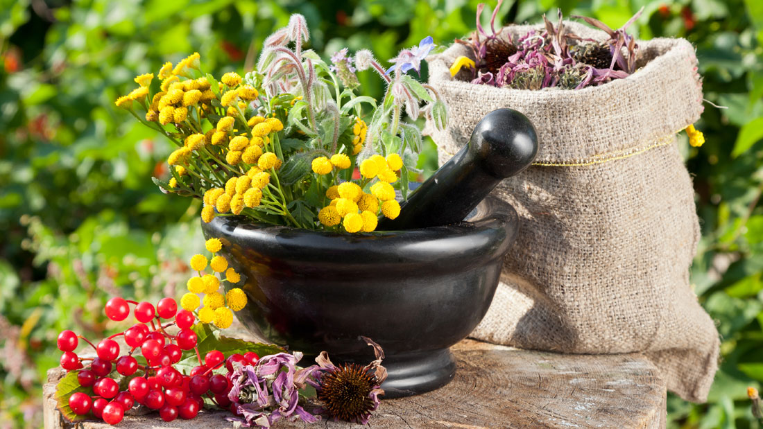 Herbal-remedies-for-food-poisoning