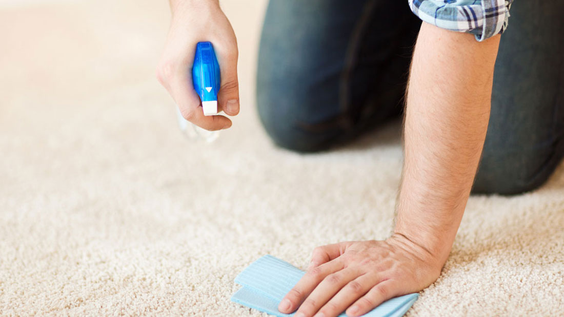 keep carpet germ free