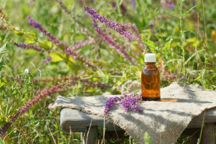 natural remedy for endometriosis clary sage essential oil