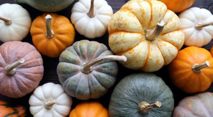 4 Grown-Up Pumpkin Recipes To Try Now