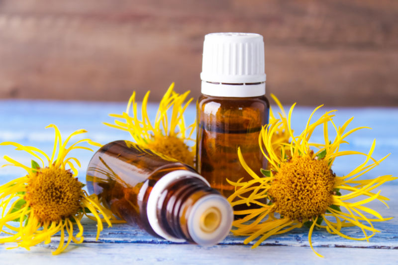 Elecampane Oil | Fight Wrinkles and Improve Overall Skin Health