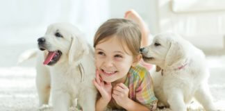 Pets Can Help You Stay Happier and Healthier