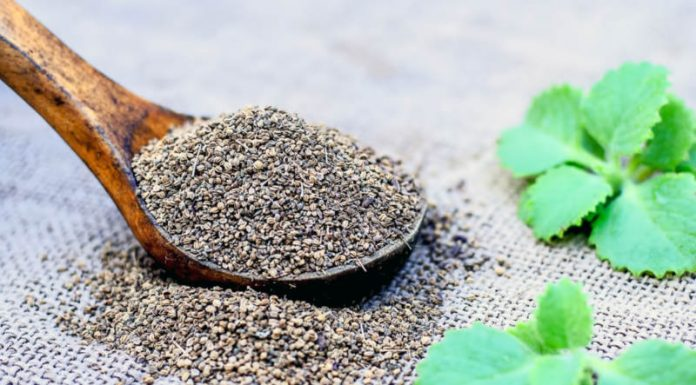 Ajwain Oil | Treat Nasal Congestion and Improve Respiratory Function