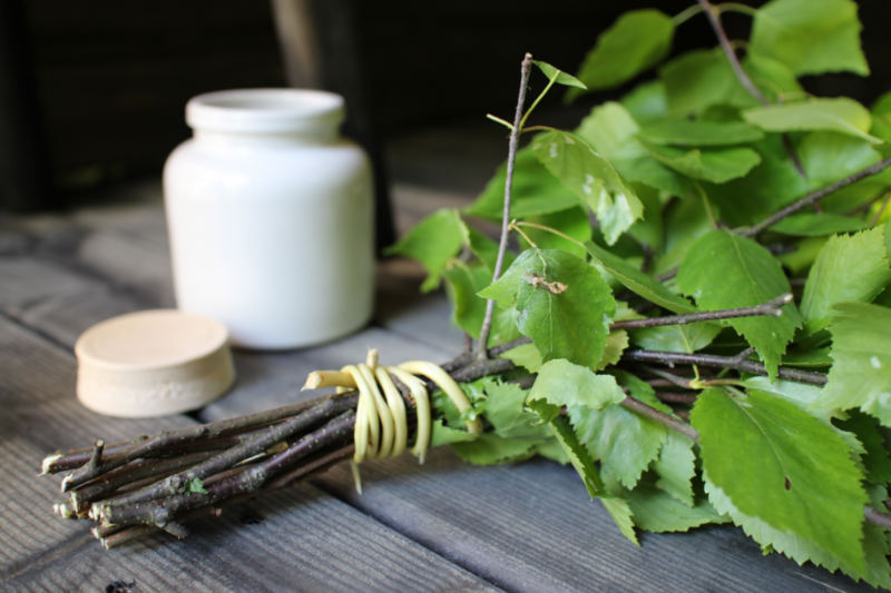 Birch Oil | Improve Oral Hygiene and Fight Bacterial Infections