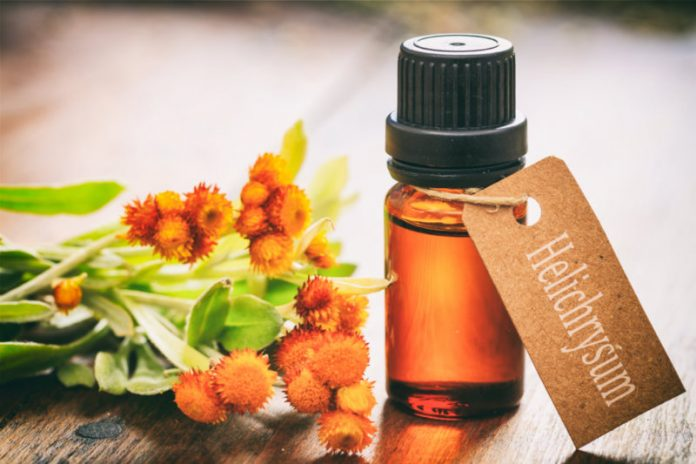 Helichrysum Oil | Keep Your Heart Protected From Heart Attacks