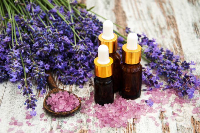 Lavender Oil | Enjoy the Beautiful Aroma and Combat Stress