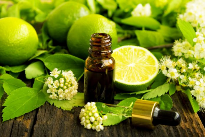 Lime Oil | Kickstart Your Appetite and Improve Your Overall Health