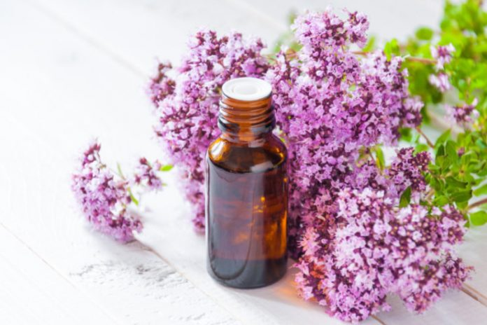 Marjoram Oil | Reduce Blood Pressure And Relax Your Blood Vessels