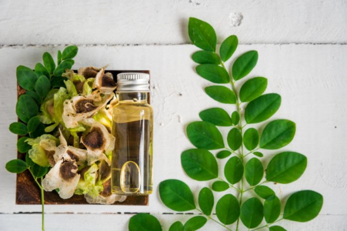 Moringa Oil | Lower Your Blood Pressure and Prevent Hypertension