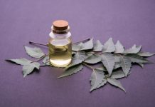Neem Oil | Keep Your Blood Sugar in Check and Combat Cancer