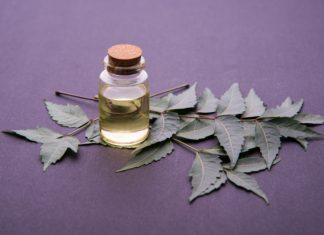 Neem Oil   Keep Your Blood Sugar in Check and Combat Cancer