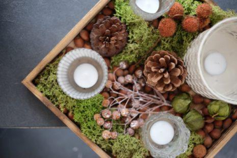 autumn tray