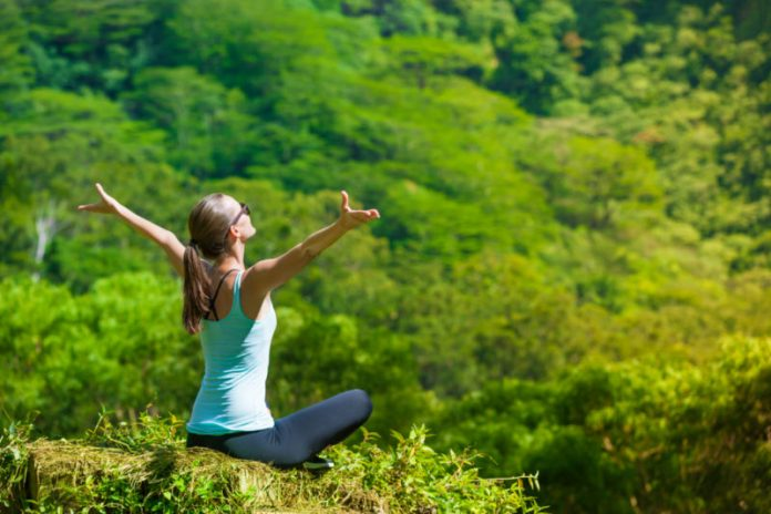 How Forest Bathing Can Boost Your Overall Health and Keep You Fit