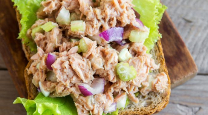salmon salad on whole grain bread