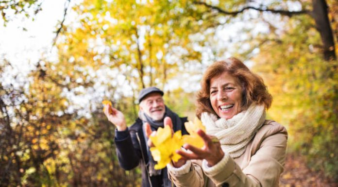 14 Top Fall Activities for Adults