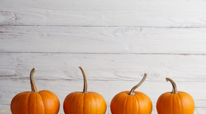 Beauty Benefits of Pumpkins