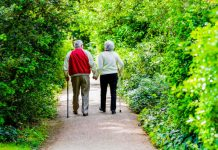 Can Living in a Green Belt Reduce the Risk of Dementia?