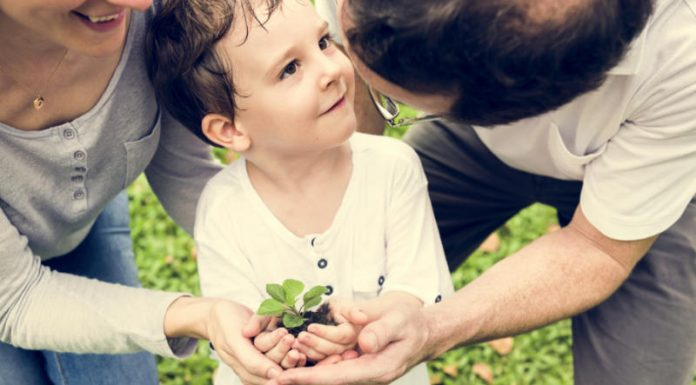 How to Lead More Socially and Environmentally Conscious Lives