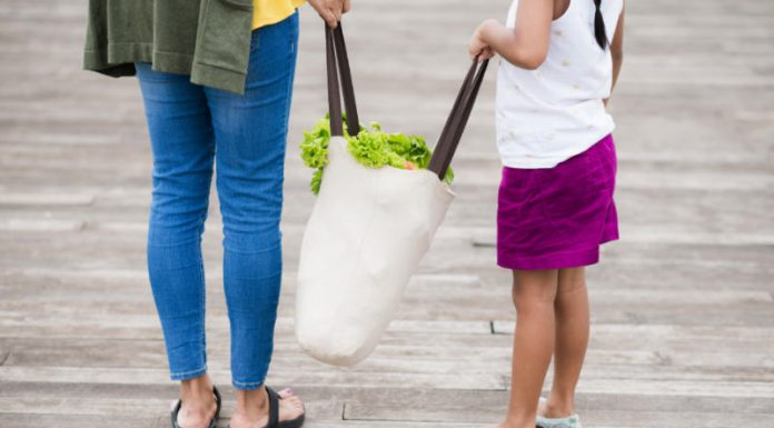 Tips to Reduce Plastic Usage In and Around the Home