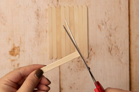 Trim popsicle sticks