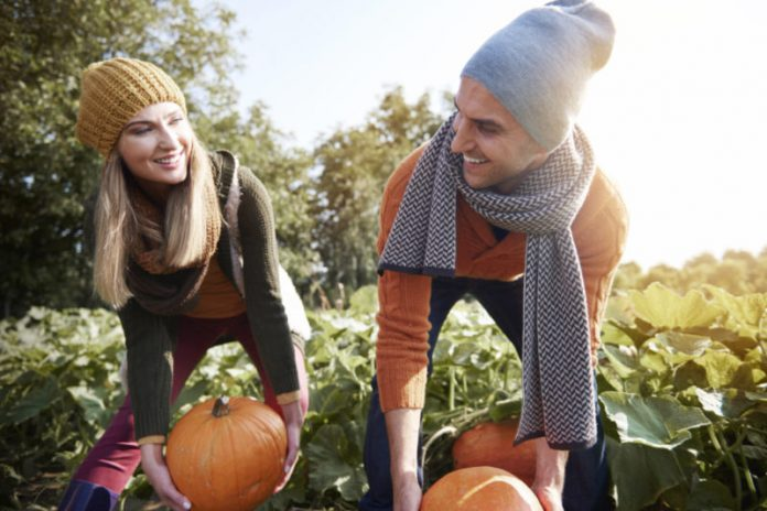 Outdoor Series: Fall Outdoor Activities That Double Up As A Workout