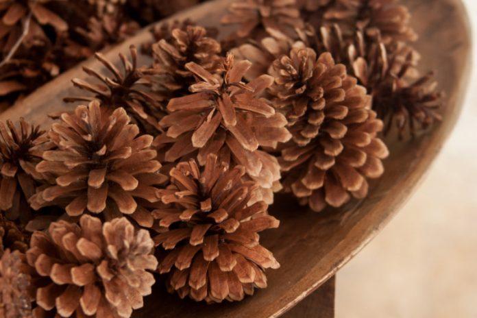 bowl of cinnamon-scented pine cones